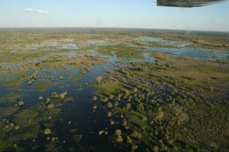 Okavango Delta Cesna