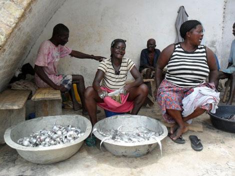 Cape Coast - Frauen verarbeiten frischen Fisch