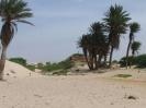 Kapverden Boa Vista Strand Mauer