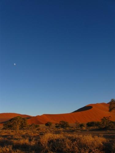Namib Wüste Sossusvlei Düne im Morgengrauen
