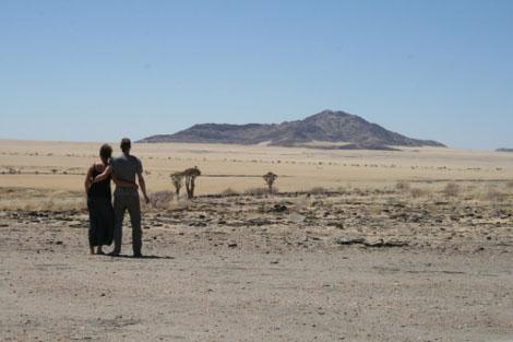 Namib Naukluft Park Namib Randwüste