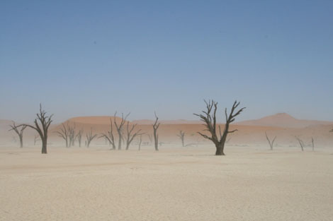 Namibia Namib Wueste Dead Vlei