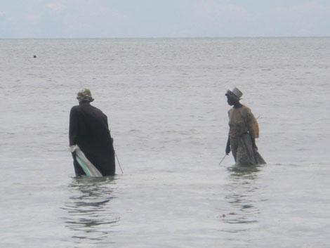 Frauen fischen nach Meerestieren - Sansibar